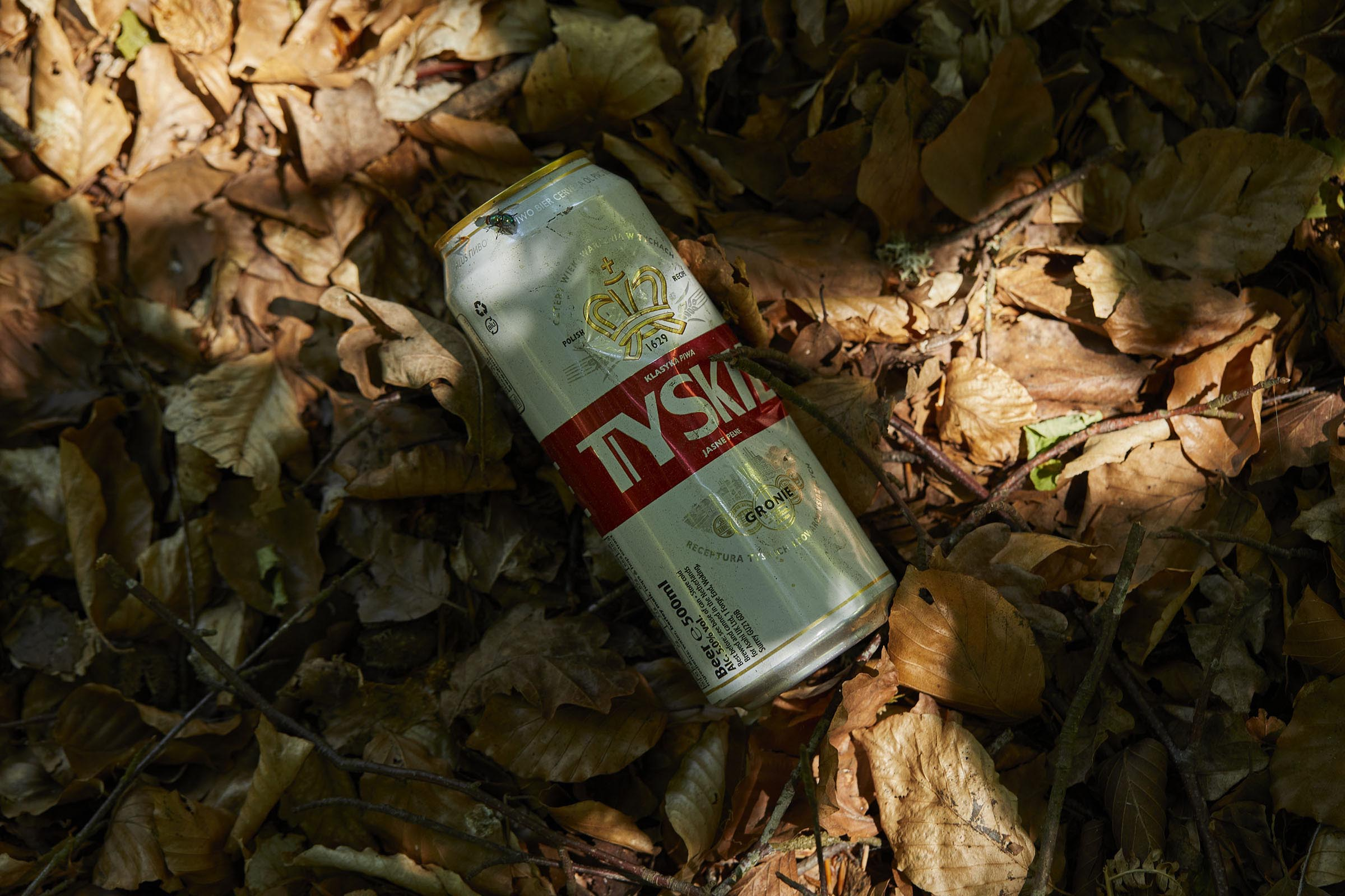 Tyskie beer can on forest floor
